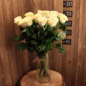 Роза 70 см (Эквадор) белая