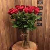 Роза 70 см (Эквадор) бордо