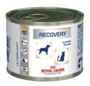 Консервы Royal Canin Recovery для кошек и собак, 195 гр.