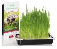 Лакомство TiTBiT трава, для кошек